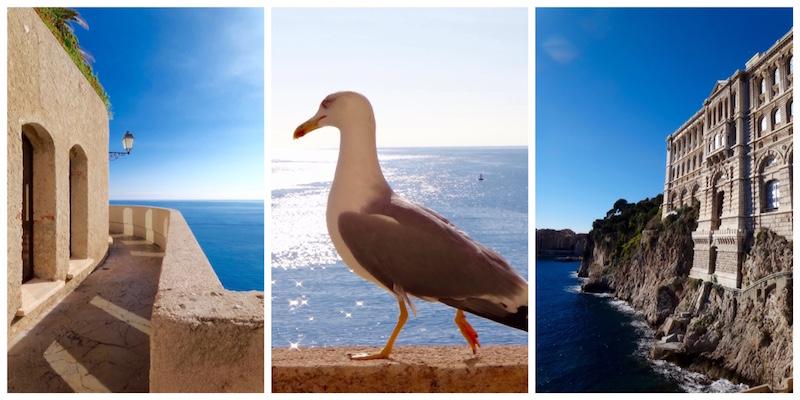 Esplanade Chemin des Pêcheurs Monaco
